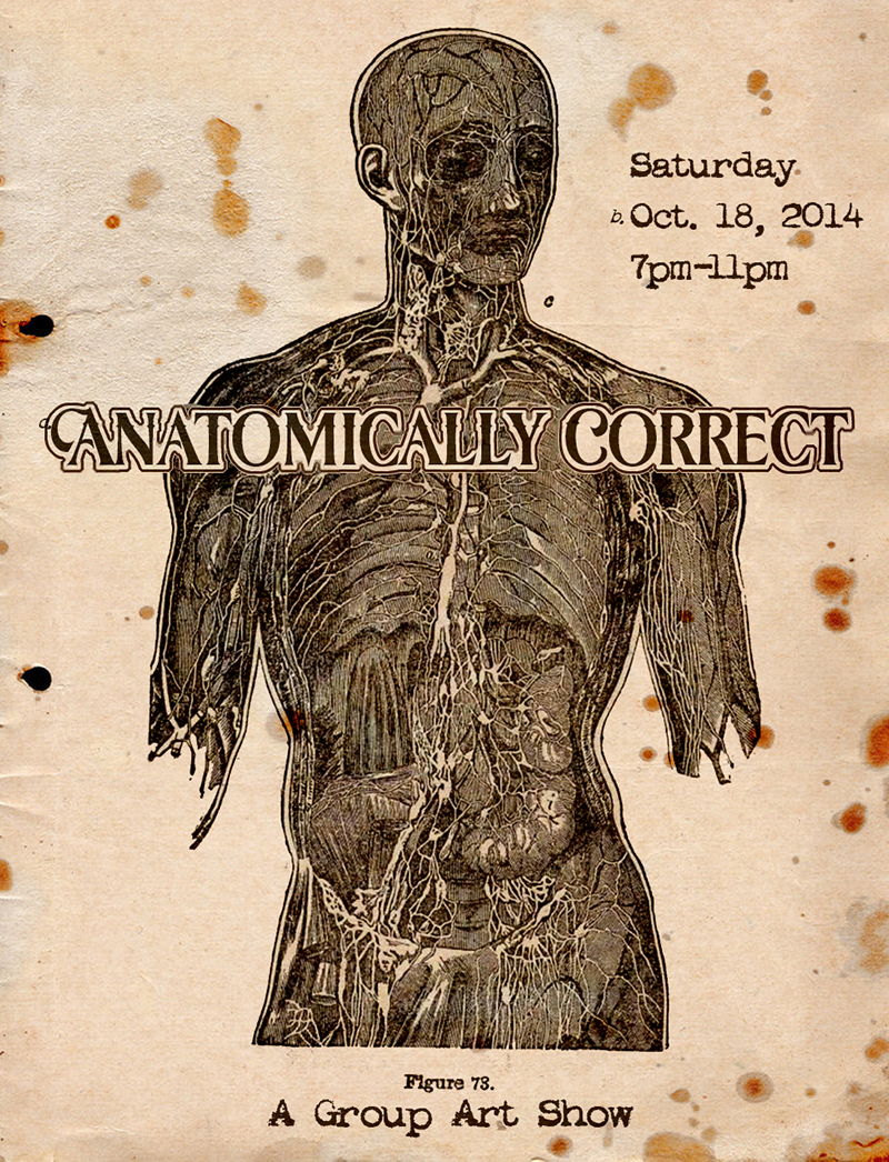 Anatomically Correct